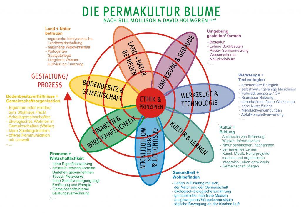 Permakultur Blume nach Mollison und Holmgren Zeitwende e.V.